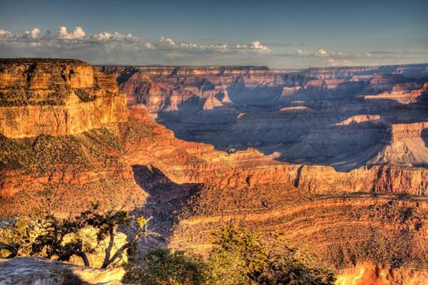 Photograph - Golden Sunrise At The Grand Canyon by Gordon Elwell