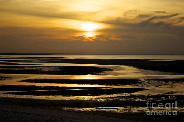 Photograph - Golden Sunset by Amazing Jules