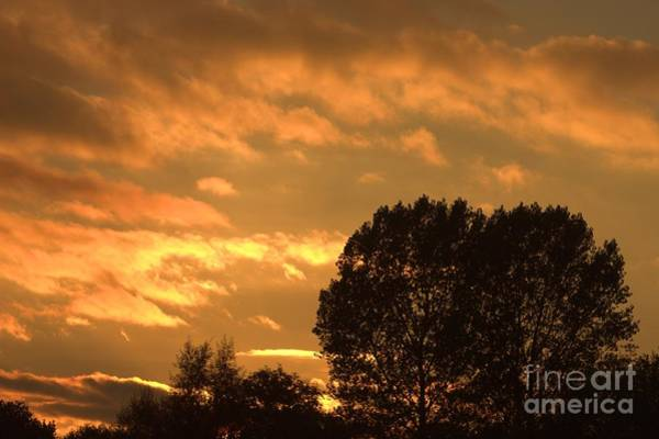 Photograph - Golden Sunset Clouds by Jeremy Hayden