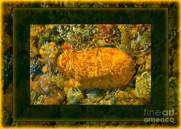 Painting - Golden Surprises In The Methow River Abstract Painting by Omaste Witkowski