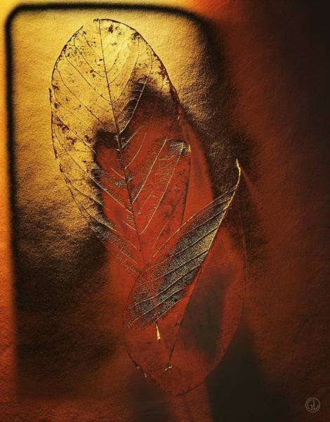 Gold Leaves Digital Art - Golden Touch Of Autumn by Gun Legler