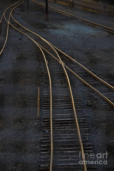 Track Photograph - Golden Tracks by Margie Hurwich