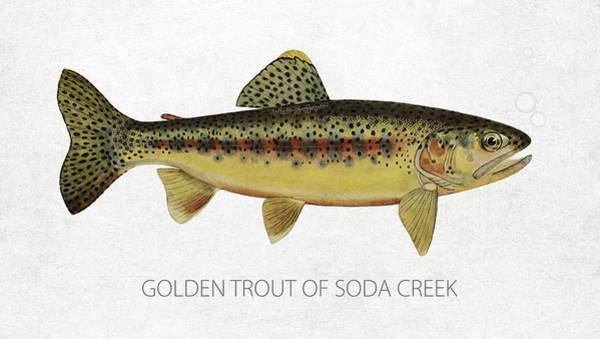Wall Art - Digital Art - Golden Trout Of Soda Creek by Aged Pixel