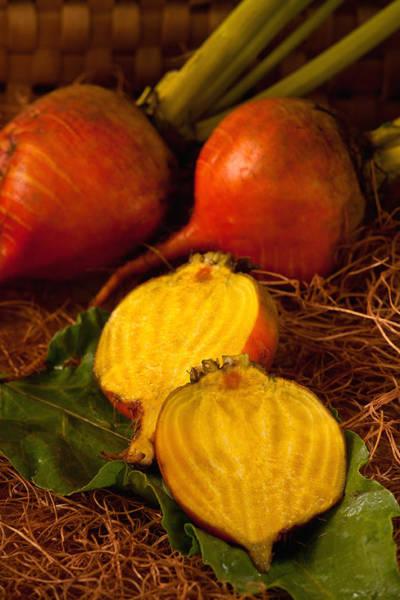 Golden Turnips Art Print