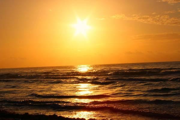 Photograph - Golden Waves by Candice Trimble