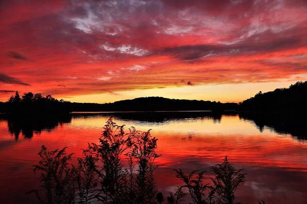 Brian Wilson Wall Art - Photograph - Goldenrod Sunset by Brian Wilson