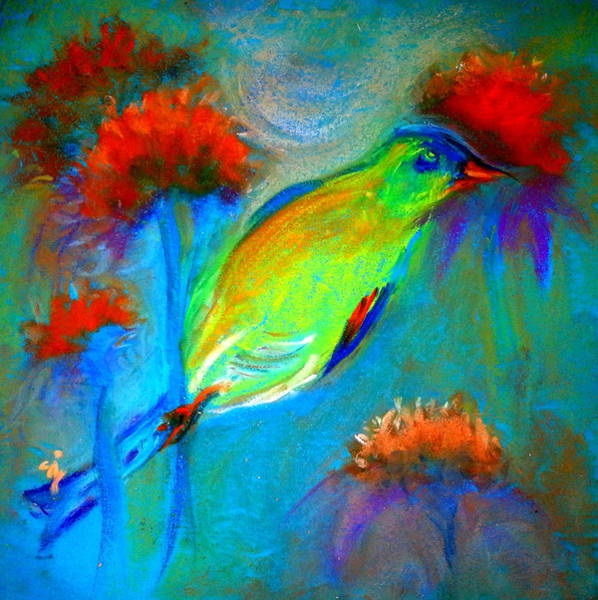 Coneflower Painting - Goldfinch by Sue Jacobi