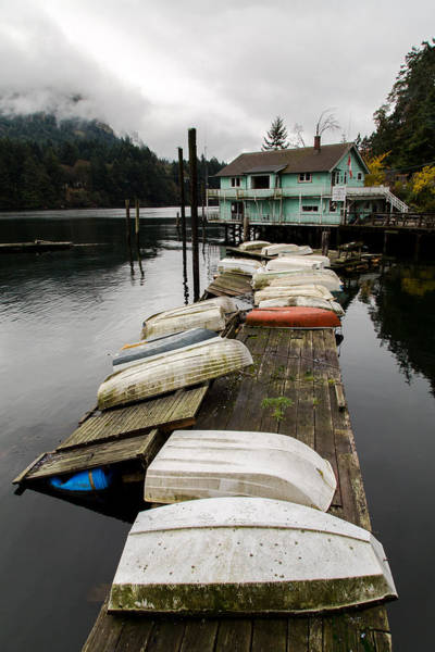 Goldstream Marina Art Print