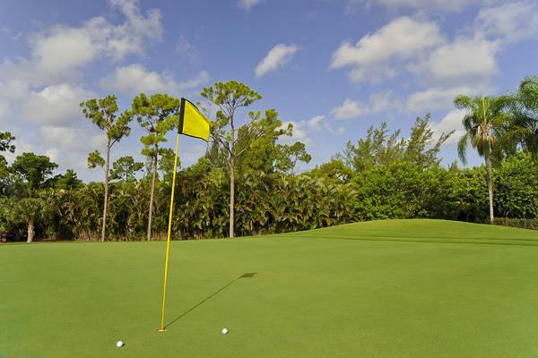 Wall Art - Photograph - Golf Balls On Golf Course by M Cohen