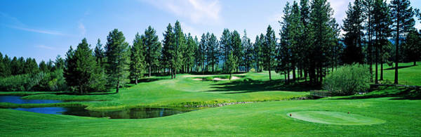 Douglas County Wall Art - Photograph - Golf Course, Edgewood Tahoe Golf by Panoramic Images