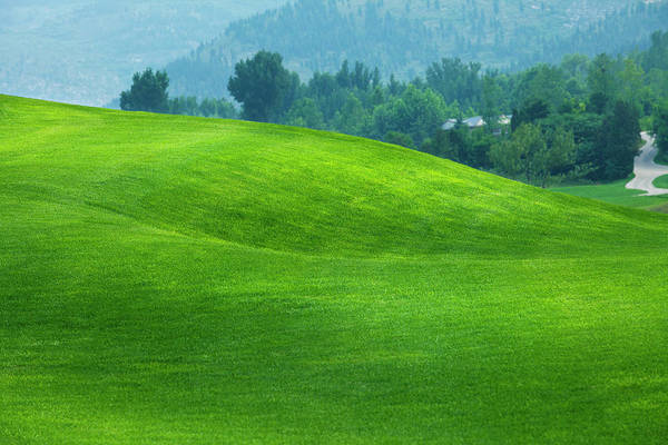 Golf Course Photograph - Golf Course by Ithinksky
