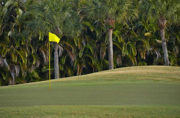 Wall Art - Photograph - Golf Course by M Cohen