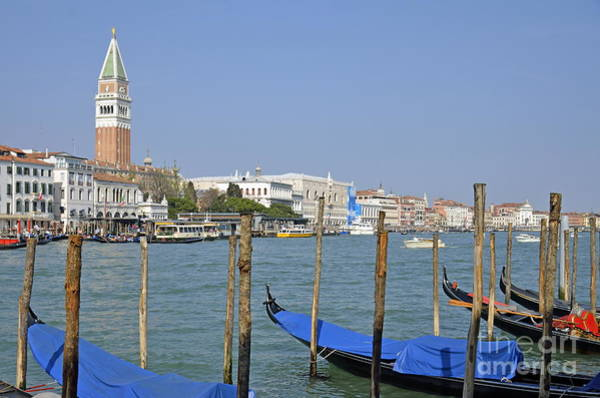 Wall Art - Photograph - Gondolas At Pier By Grand Canal by Sami Sarkis