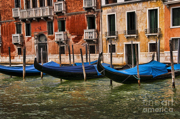 Lion Of St Mark Photograph - Gondolas For Hire by Brenda Kean