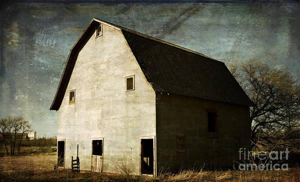 Photograph - Good Bones by Pam  Holdsworth