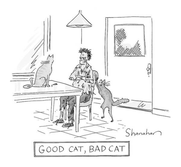 Wall Art - Drawing - Good Cat, Bad Cat by Danny Shanahan