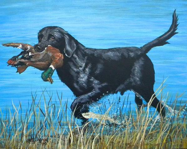 Painting - Good Dog by Jeanette Jarmon