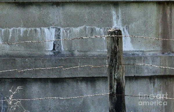 Wire Wrap Photograph - Good Fences Make Good Neighbors by Joe Pratt