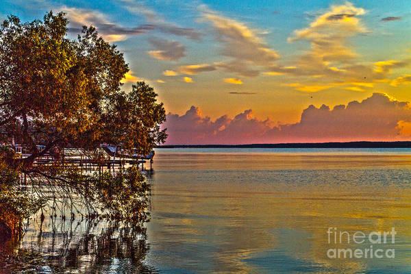 Photograph - Good Morning Seneca by William Norton