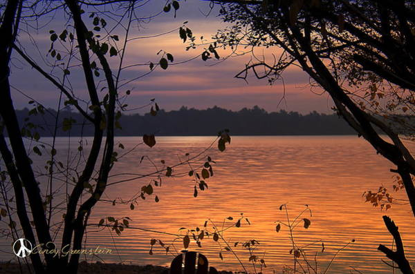 Photograph - Goodnight Lake by Cindy Greenstein