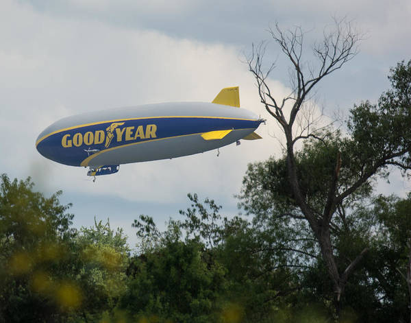 Photograph - Goodyear Blimp Tree Top Flyer by Richard Kopchock