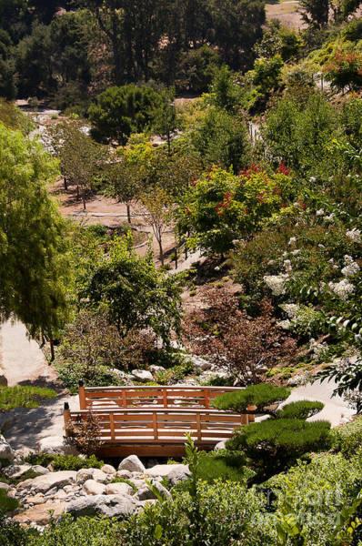 Photograph - Gorge With Friendship Garden by Brenda Kean