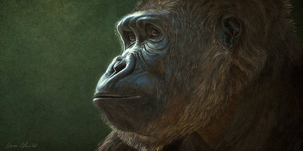 Wall Art - Digital Art - Gorilla by Aaron Blaise