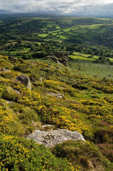 Photograph - Gorse Tors And Fields by Pete Hemington