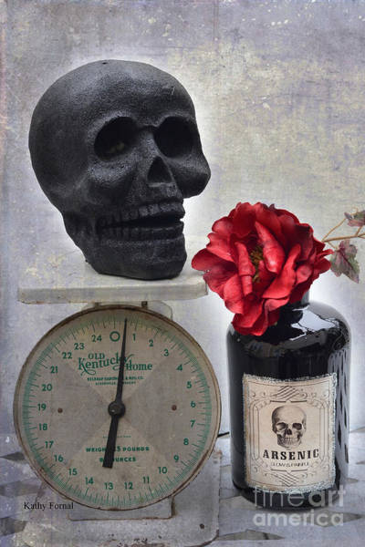 Halloween Photograph - Gothic Fantasy Spooky Halloween Black Skull And Arsenic Bottle With Rose by Kathy Fornal