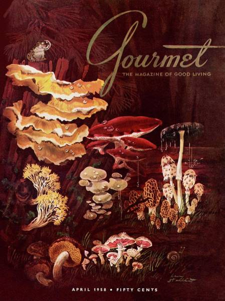 Growth Photograph - Gourmet Cover Featuring Wild Mushrooms by Henry Stahlhut