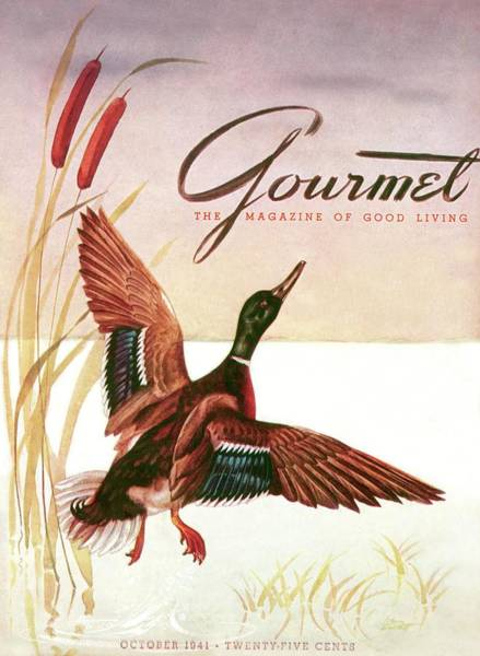 Snow Photograph - Gourmet Cover Of A Goose by Henry Stahlhut