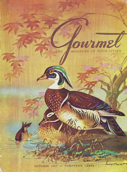 Autumn Photograph - Gourmet Cover Of Wood Ducks by Henry Stahlhut