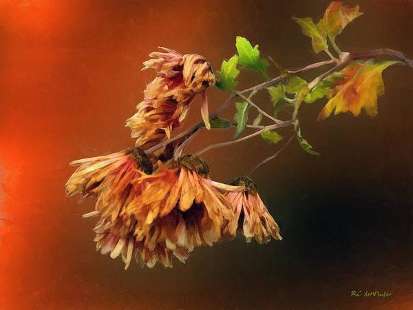 Painting - Graceful Fade by RC DeWinter