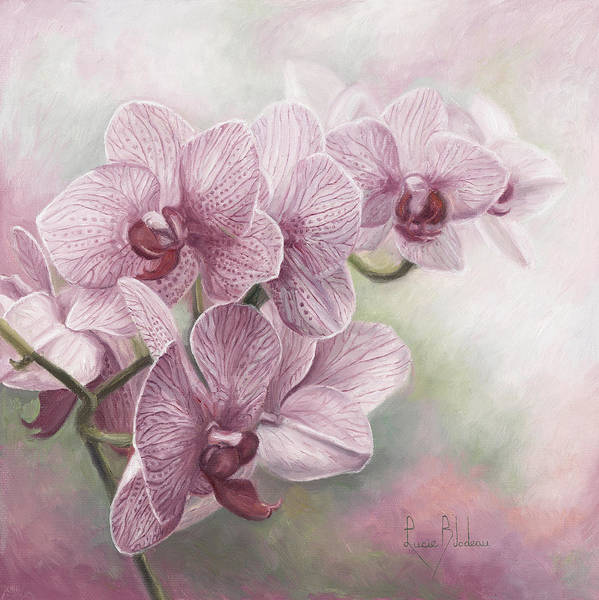 Painting - Graceful Orchids by Lucie Bilodeau