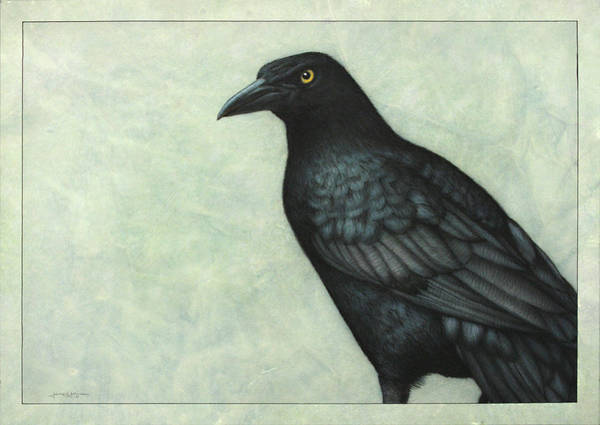 James Wall Art - Painting - Grackle by James W Johnson