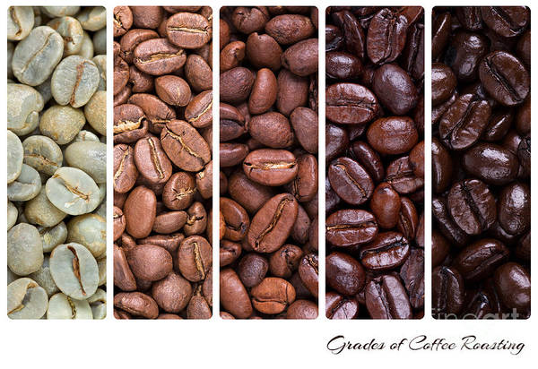 Addiction Wall Art - Photograph - Grades Of Coffee Roasting by Jane Rix