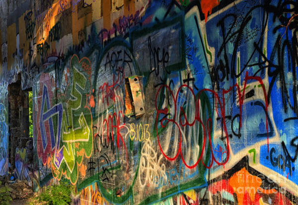 Artful Photograph - Graffiti Blues by Terry Rowe