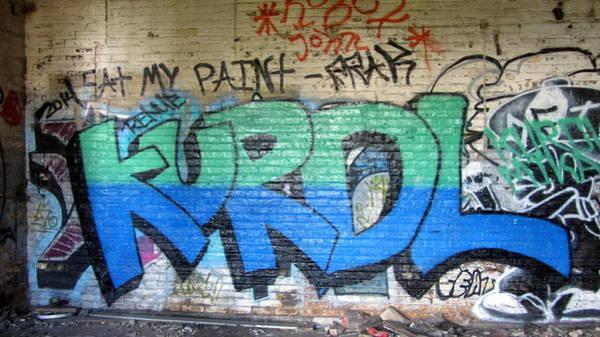 Photograph - Graffiti Kurdl 2 by Anita Burgermeister