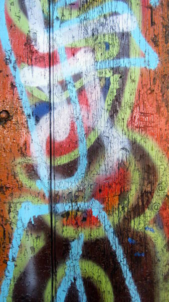 Photograph - Graffiti Orange Close Up by Anita Burgermeister