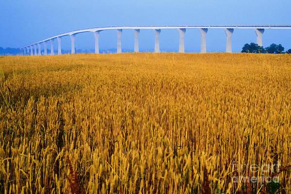 Photograph - Grain And Route 4 Bridge by Thomas R Fletcher