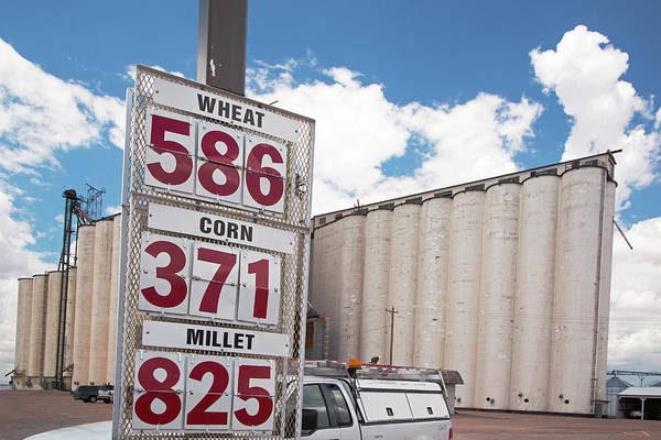 Grain Elevator Photograph - Grain Prices by Jim West