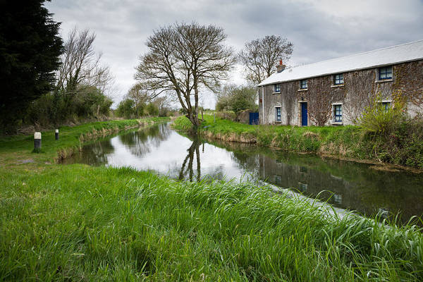 Wall Art - Photograph - Grand Canal At Miltown by Ian Middleton