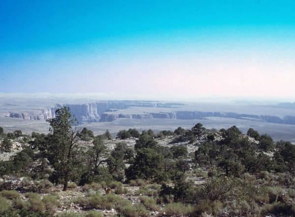 Photograph - Grand Canyon 1972 by John Mathews