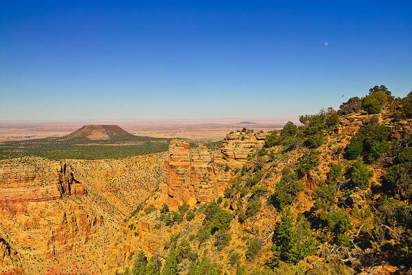 Photograph - Grand Canyon Desert View by Greg Norrell