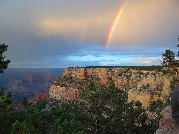 Photograph - Grand Canyon Following The Storm by Keith Stokes