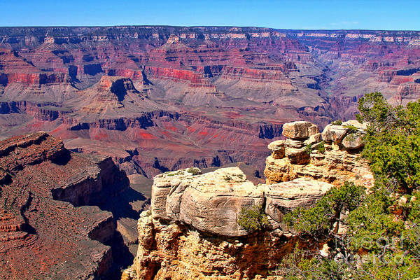 Photograph - Grand Canyon Of Red By Diana Sainz by Diana Raquel Sainz