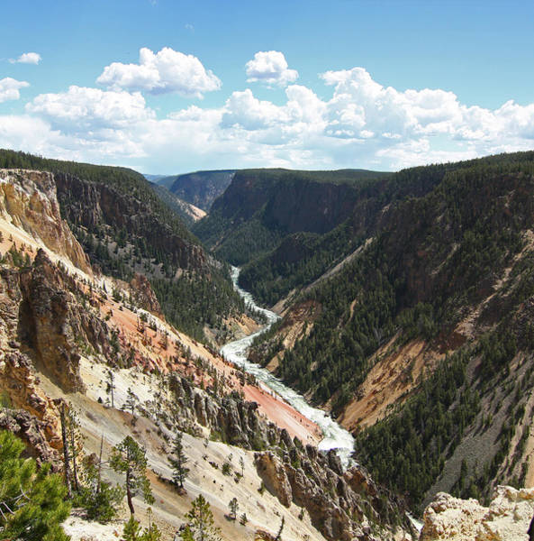 Photograph - Grand Canyon Of The Yellowstone by Jean Clark