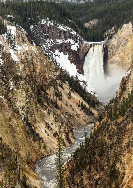 Photograph - Grand Canyon Of The Yellowstone by Michael Chatt