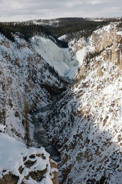 Yellowstone Canyon Photograph - Grand Canyon Of The Yellowstone River by Dr P. Marazzi/science Photo Library
