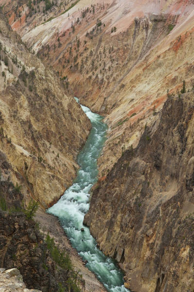 Yellowstone Canyon Photograph - Grand Canyon Of Yellowstone River by Howie Garber